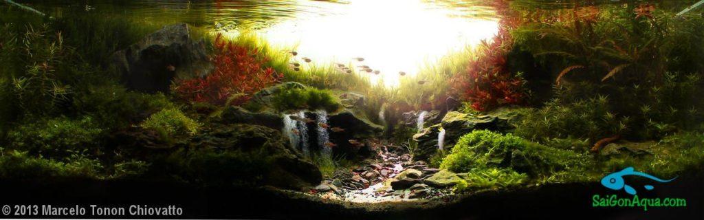 2013 aga aquascaping contest 60l 120l c a h ng th y for Aquarium 120l