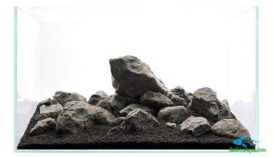 Cách làm hồ thủy sinh đá 9