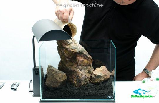 cách làm hồ thủy sinh mini (10)