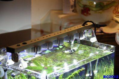 Led лампы для аквариума своими руками 65