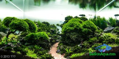 Entry #151 118L Aquatic Garden 梵谷