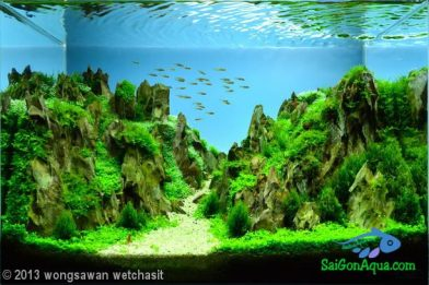 Entry #174 36L Aquatic Garden Rivendell