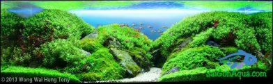 243L Aquatic Garden 翠抱環山