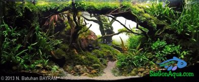 270L Aquatic Garden Valinor