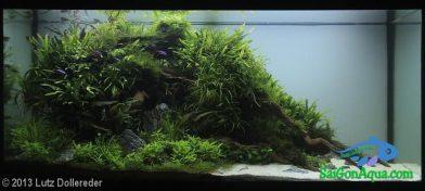 300L Aquatic Garden Sansibar