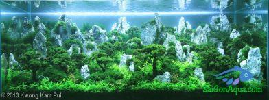 350L Aquatic Garden