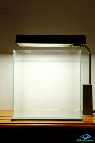 Cách làm bể thủy sinh mini_3